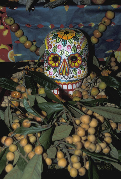 day of dead skull. the Days of the Dead.