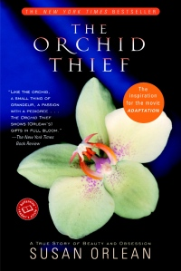 theorchids